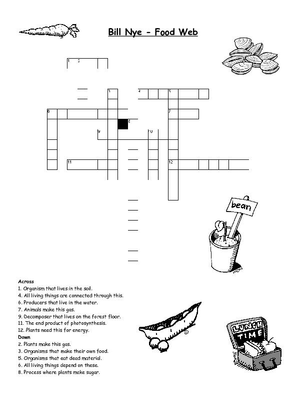 Free food chain worksheet 4th grade