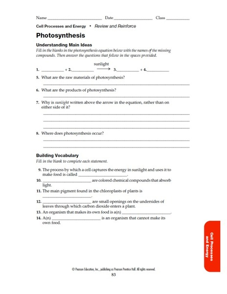 photosynthesis review worksheet high school answers photosynthesis teacher blogs and teaching. Black Bedroom Furniture Sets. Home Design Ideas