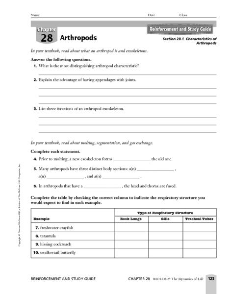 Arthropod Worksheet - Synhoff