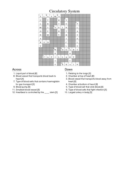 6th grade science crossword puzzle worksheets crossword puzzles have fun teachingfifth grade. Black Bedroom Furniture Sets. Home Design Ideas