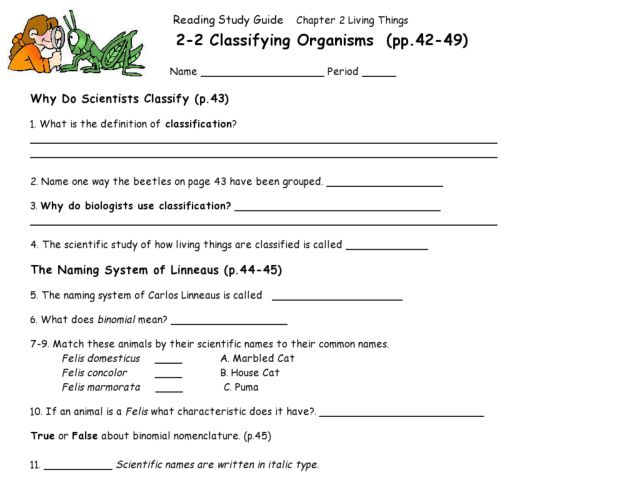 Classification of living organisms worksheet answers