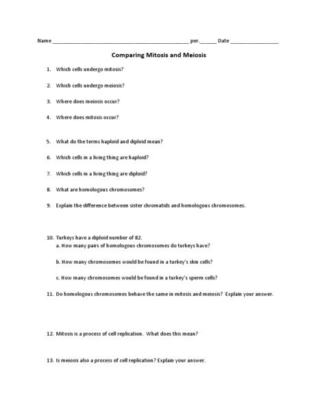 Comparing Mitosis And Meiosis Worksheet - klejonka