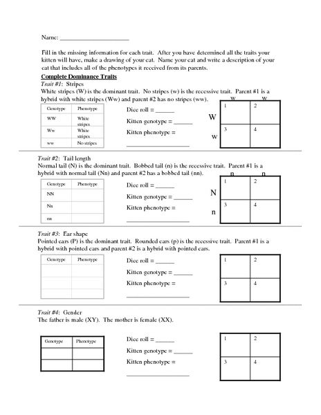 Collection Dominant And Recessive Traits Worksheet Photos ...