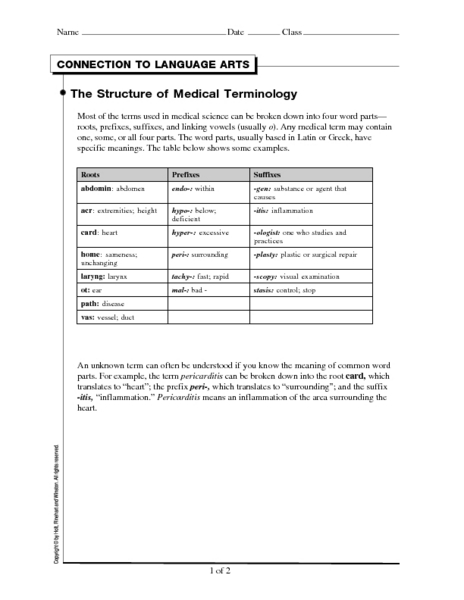 Worksheet Medical Terminology Worksheets medical terminology worksheet intrepidpath connection to language arts the structure of terminology