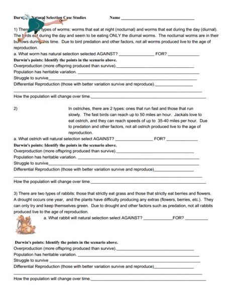 Printables Natural Selection Worksheet natural selection worksheet davezan davezan