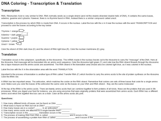 Worksheets Dna Transcription And Translation Worksheet dna coloring transcription and translation 9th higher ed lesson plan planet