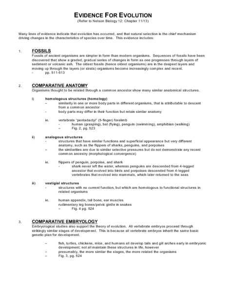 Printables Evolution Worksheet evidence for evolution 10th grade worksheet lesson planet
