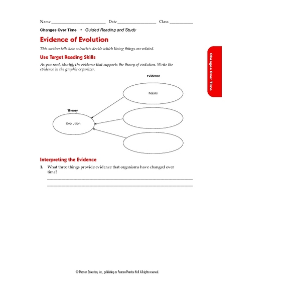 Worksheets Evidence Of Evolution Worksheet Answers evidence of evolution 9th 12th grade worksheet lesson planet