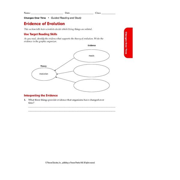 evidence of evolution worksheet – Evidence of Evolution Worksheet