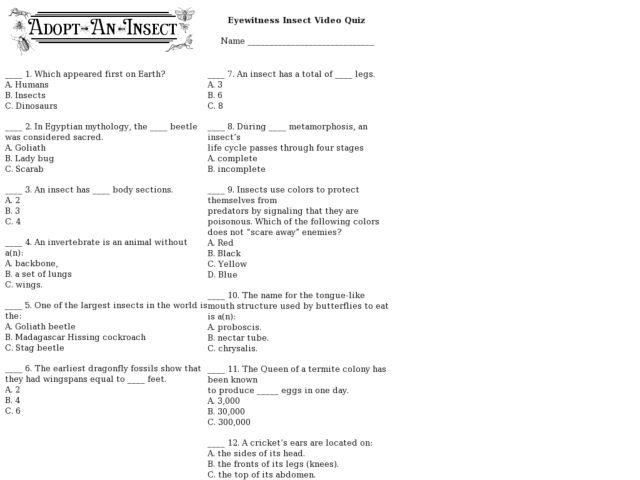 Metamorphosis Worksheet Proga Info