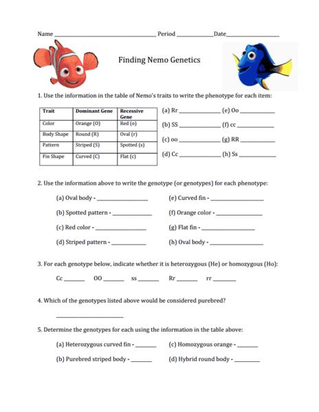 Phenotype And Genotype Worksheet Finding nemo worksheet on genetics ...
