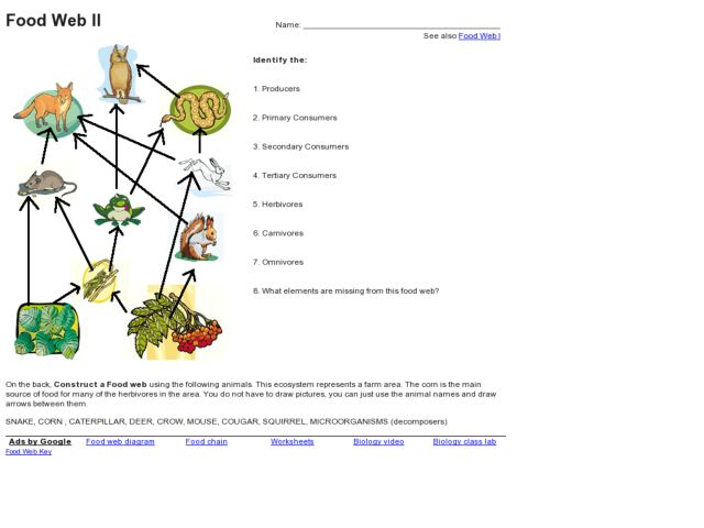 Printables. Food Web Worksheet High School. Gozoneguide Thousands ...