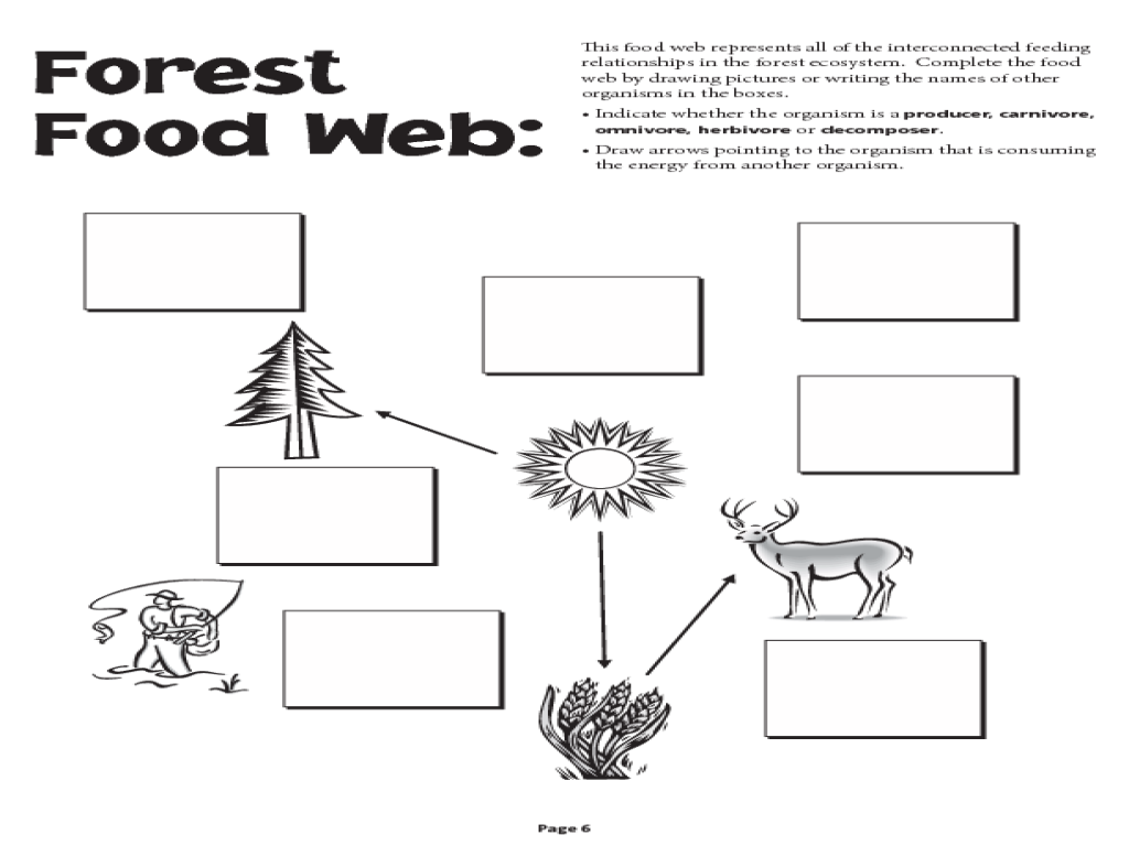 Complete the Food Chains Worksheet: EnchantedLearning.com