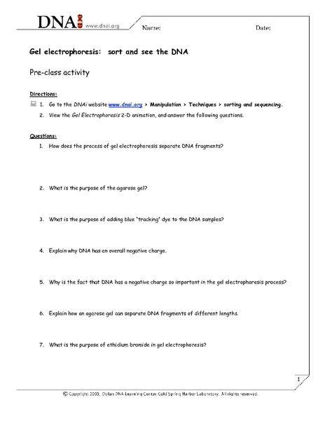 Printables Gel Electrophoresis Worksheet gel electrophoresis sort and see the dna 7th 12th grade worksheet lesson planet