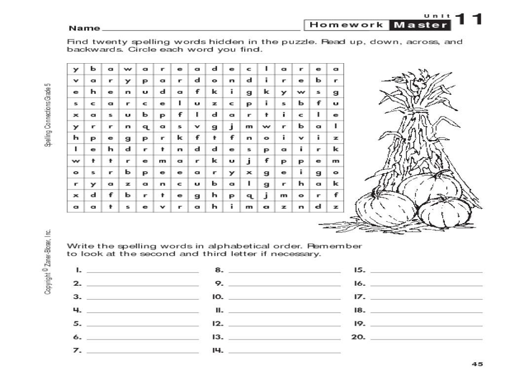 Search homework help