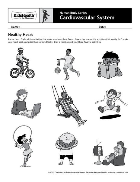 Worksheet 2nd Grade Health Worksheets human body series cardiovascular system healthy heart pre k 2nd grade worksheet lesson planet