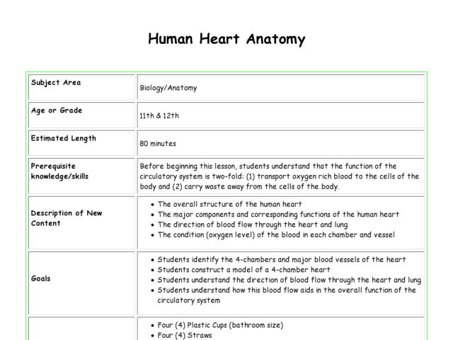 Anatomy Of A Lesson Plan