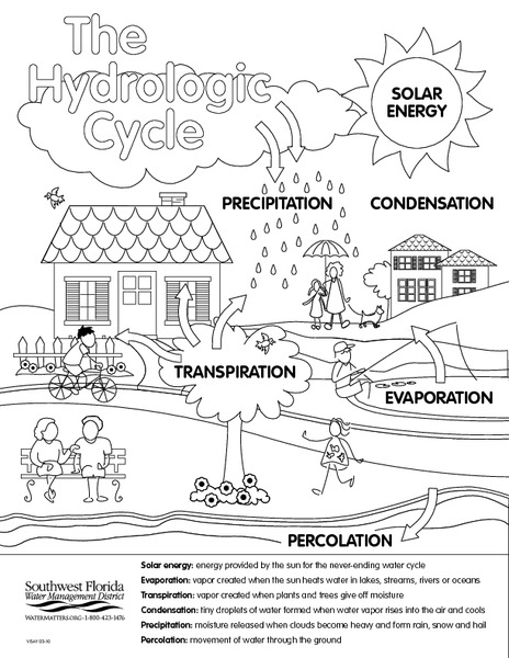 All Worksheets » Evaporation And Condensation Worksheets
