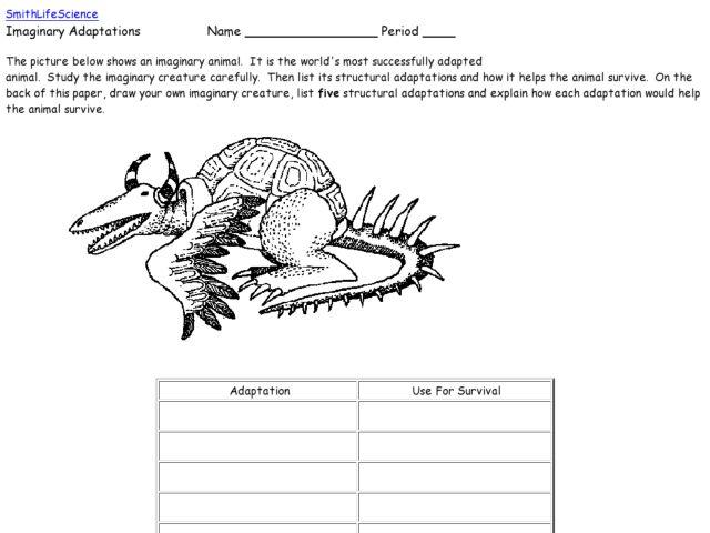 Adaptation Worksheet Free Worksheets Library – Adaptation Worksheets