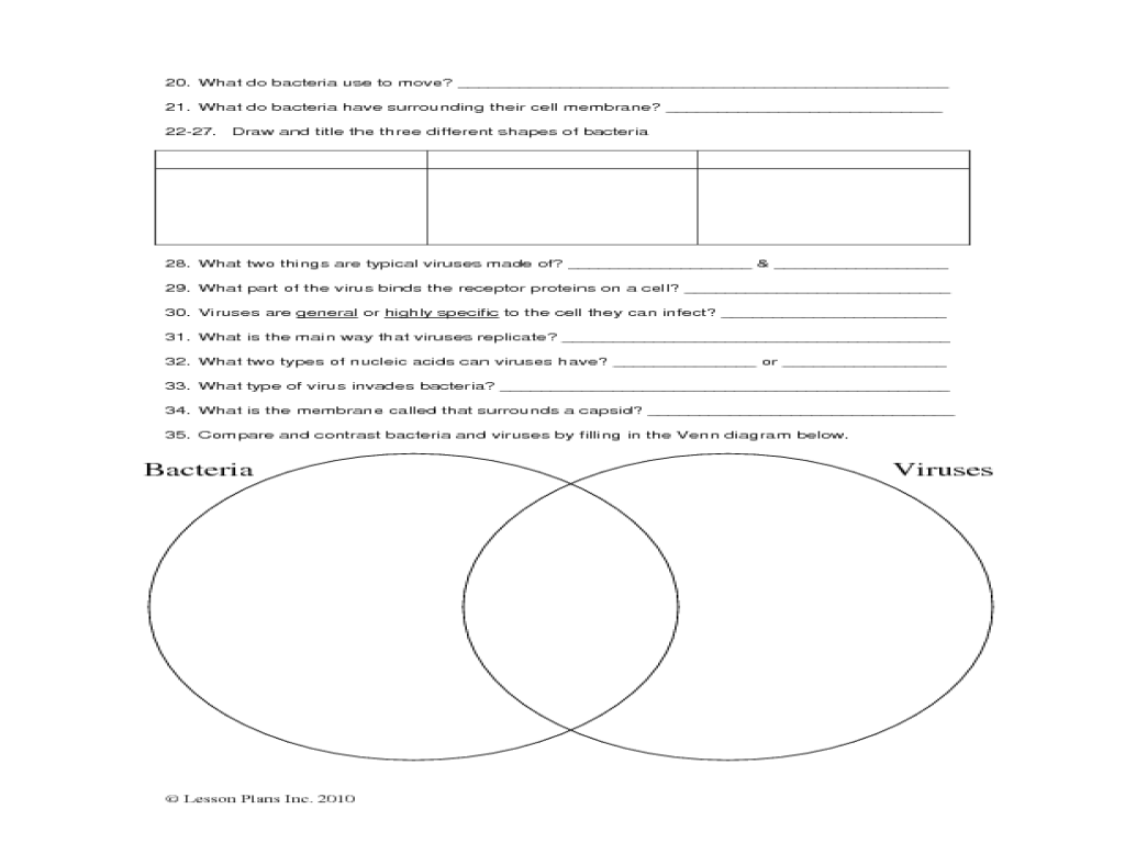Worksheet Virus And Bacteria Worksheet introductory bacteria and virus worksheet 9th 12th grade lesson planet