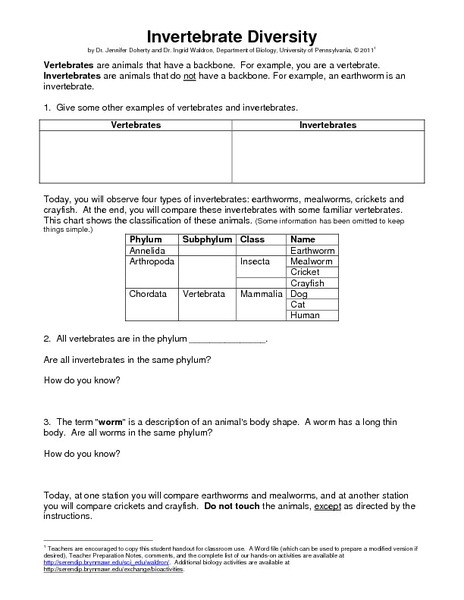 Printables Diversity Worksheets invertebrate diversity 6th 12th grade worksheet lesson planet