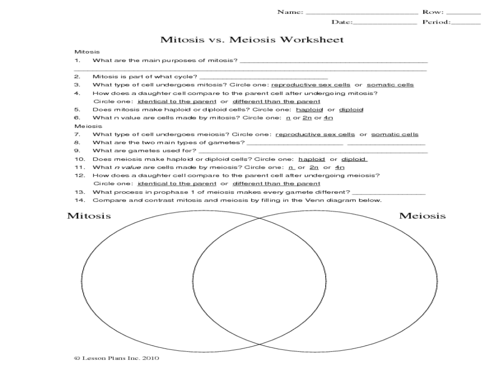 Meiosis Vs Mitosis Worksheet Mitosis vs  Meiosis Worksheet