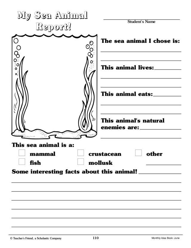 animal book report 2nd grade