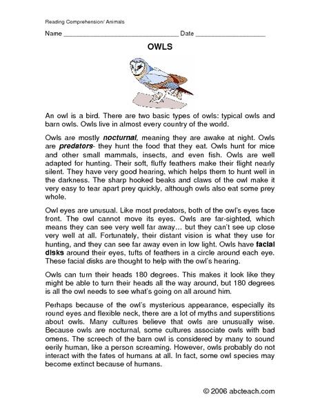 all worksheets owl worksheets printable worksheets guide for children and parents. Black Bedroom Furniture Sets. Home Design Ideas