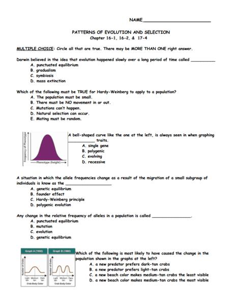 natural selection worksheets - Termolak