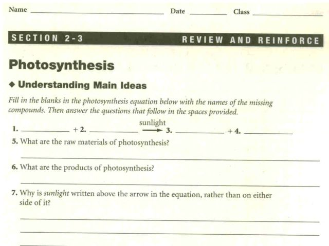 photosythesis worksheet Photosynthesis showing top 8 worksheets in the category - photosynthesis once you find your worksheet, just click on the open in new window bar on the bottom of the.