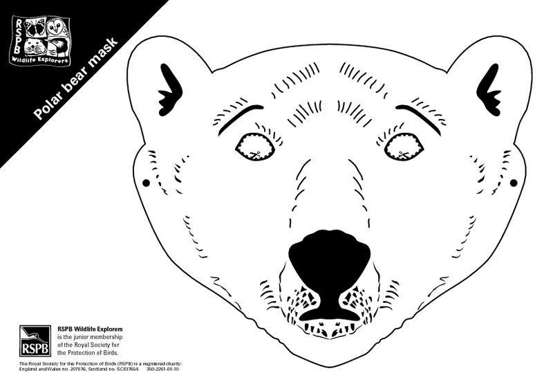 Polar bear mask template printable pictures to pin on for Polar bear face template