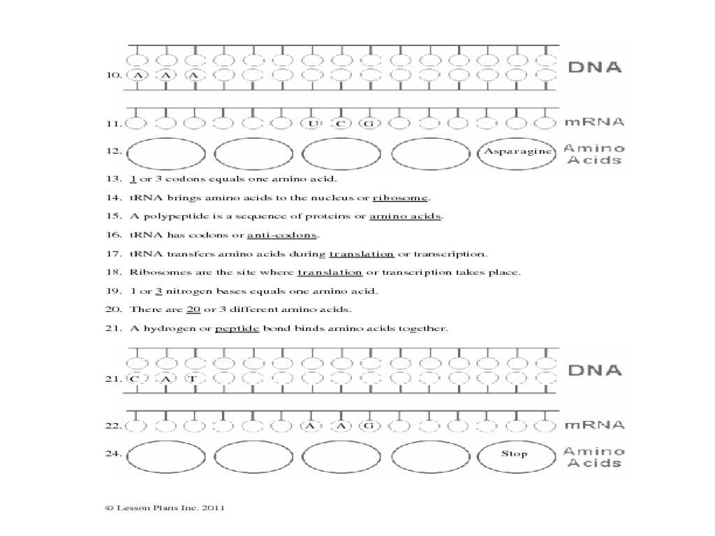 Protein Synthesis Worksheet 9th - 12th Grade Worksheet | Lesson Planet