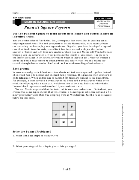 Punnett Square Worksheets With Answers - Delibertad