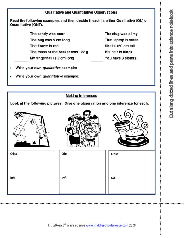Worksheet Observation And Inference Worksheet qualitative and quantitative observations 7th 9th grade worksheet lesson planet