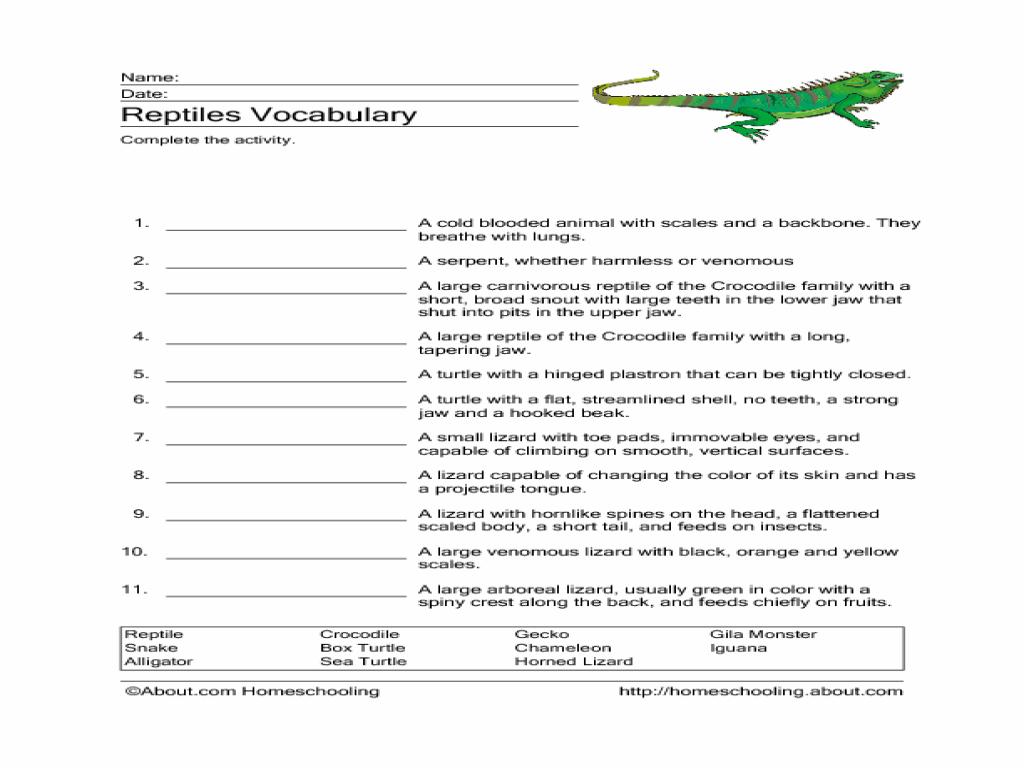Uncategorized Reptile Worksheets worksheet reptile worksheets luizah and essay site for reptiles vocabulary 3rd 5th grade lesson planet