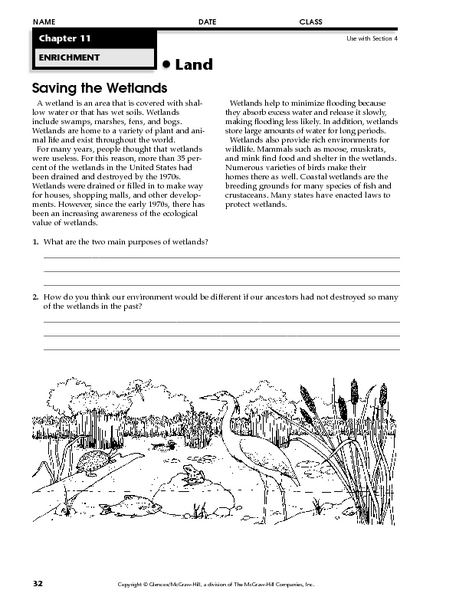 Saving the Wetlands 5th - 8th Grade Worksheet   Lesson Planet