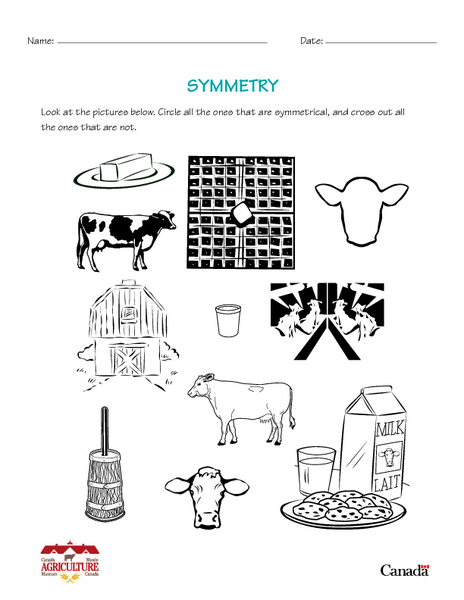 Symmetry in Agriculture 2nd - 4th Grade Worksheet | Lesson Planet