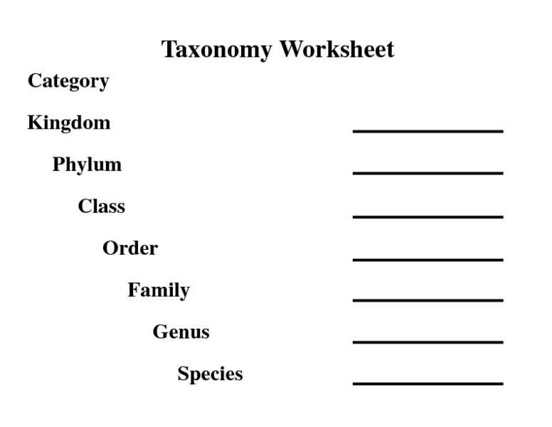 Worksheets Taxonomy Classification Worksheet taxonomy worksheet 6th 7th grade lesson planet