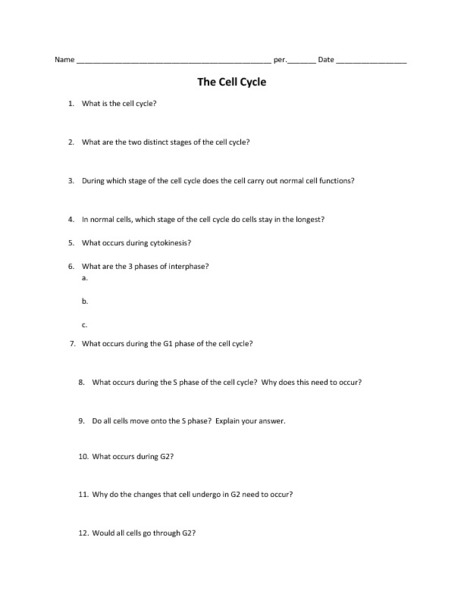 Printables Meiosis Worksheet Answers meiosis matching worksheet davezan collection of bloggakuten