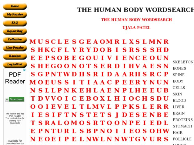 Body Systems Word Search The Human Body Word Search 6th
