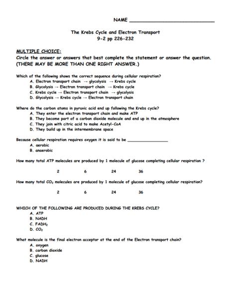 Krebs Cycle Worksheet - Worksheets