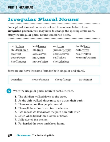 Irregular Plurals Worksheet 4th Grade - Worksheets