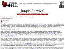 Jungle Survival Lesson Plan
