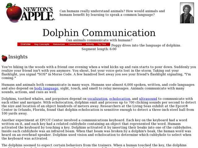 Dolphin Communication Lesson Plan