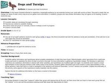 Dogs and Turnips Lesson Plan