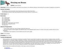 Preying on Beans Lesson Plan