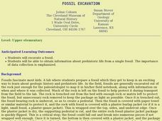 Fossil Excavation Lesson Plan