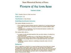 Crinoids:  Flowers of the Iowa Seas Lesson Plan