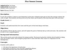 Five Senses Lesson Lesson Plan
