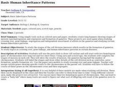 Basic Human Inheritance Patterns Lesson Plan